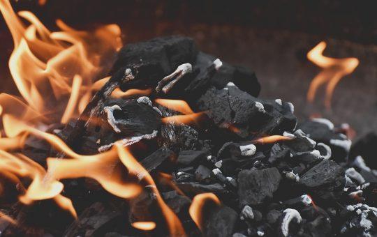 Czy warto kupować węgiel i drewno online?
